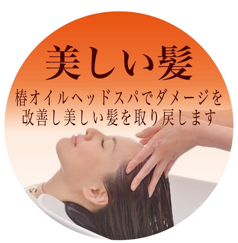 美しい髪 椿オイルヘッドスパでダメージ改善し美しい髪を取り戻します