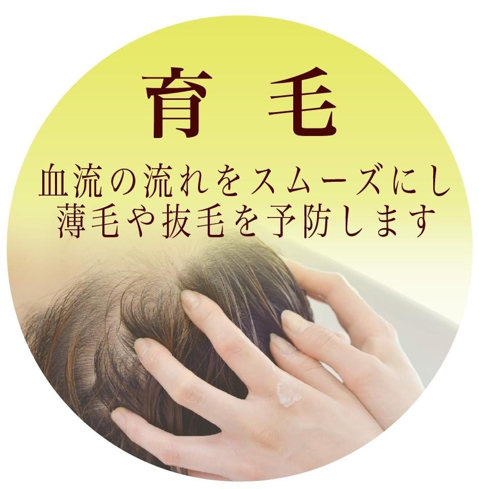 育毛 血流の流れをスムーズにし薄毛や抜毛を予防します